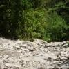 камни и листья)