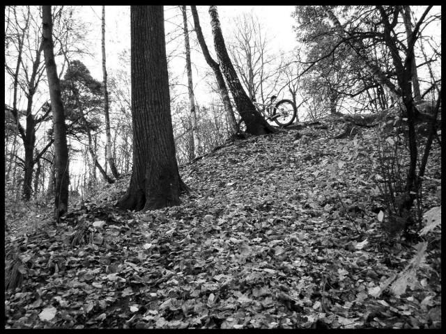 Измайлово - октябрь 2008