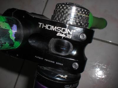 Thomson_stem_01.jpg