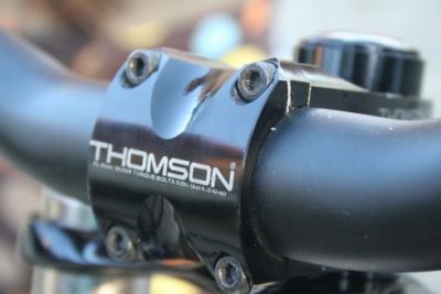 Thomson_stem_02.jpg