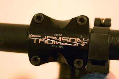 Thomson_stem_06.jpg
