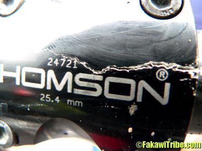 Thomson_stem_11.jpg