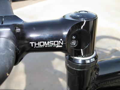 Thomson_stem_12.jpg
